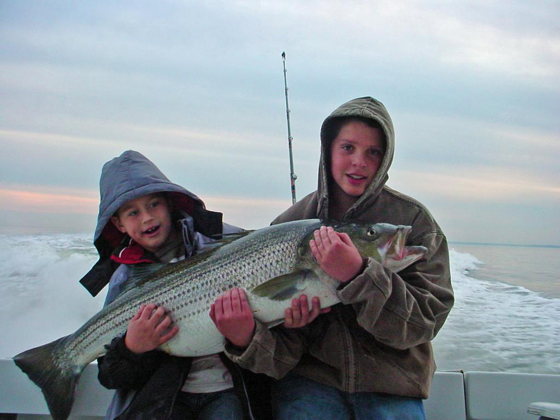Chesapeake bay striped bass fishing for Striper fishing chesapeake bay