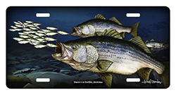 Striped Bass License Plate
